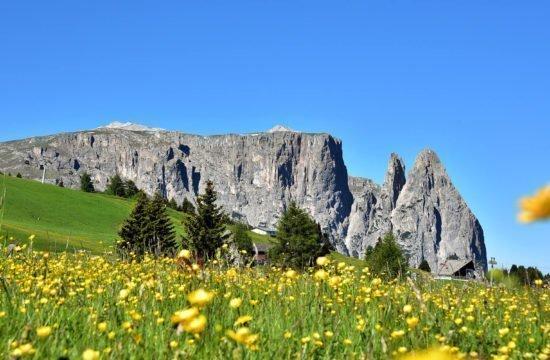Vacanze al maso Alto Adige